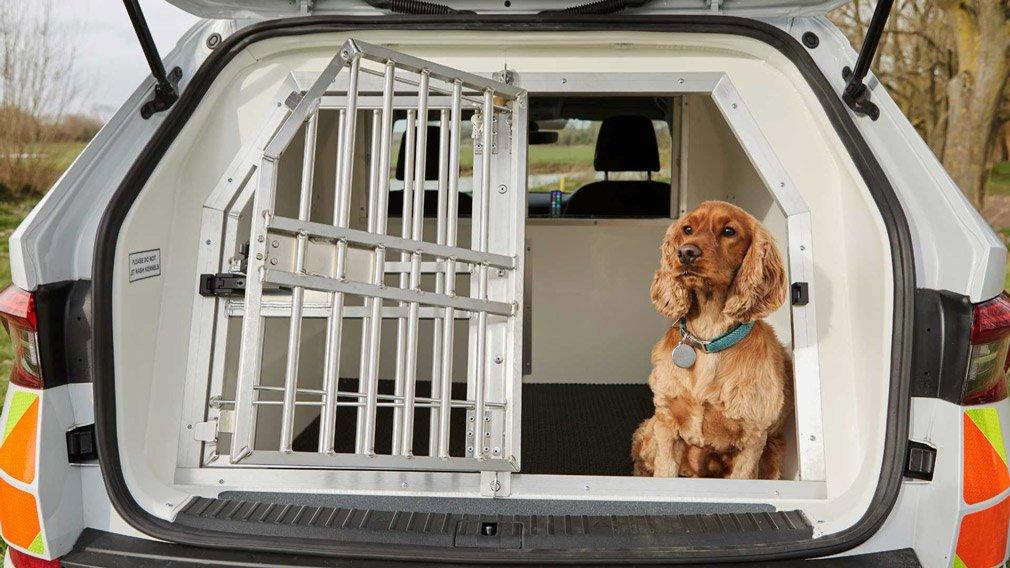 Skoda Kodiaq будет использоваться для перевозки полицейских собак